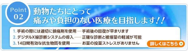 m_point2